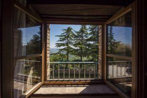 прозорец с гледка към гора